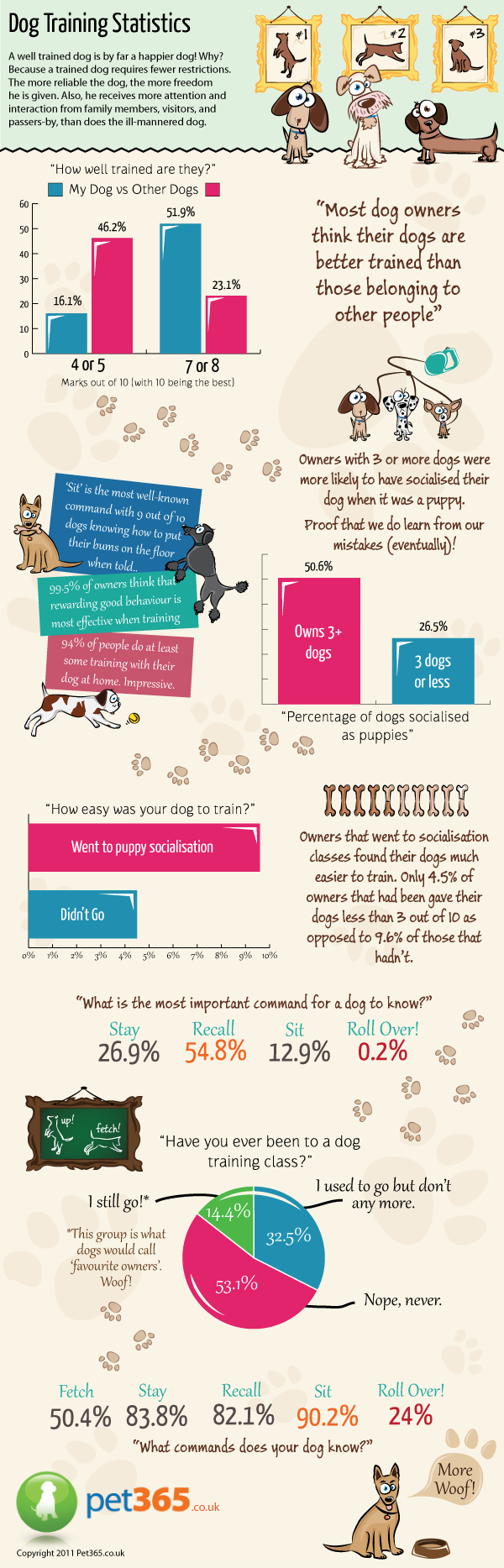 dog_training_infographic