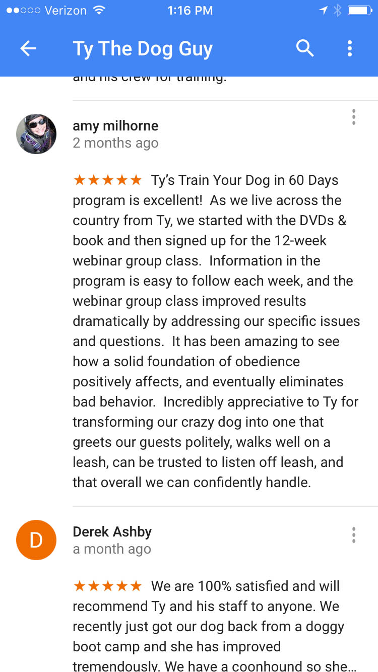 Transform Your Dog in 60 days Testimonial 2