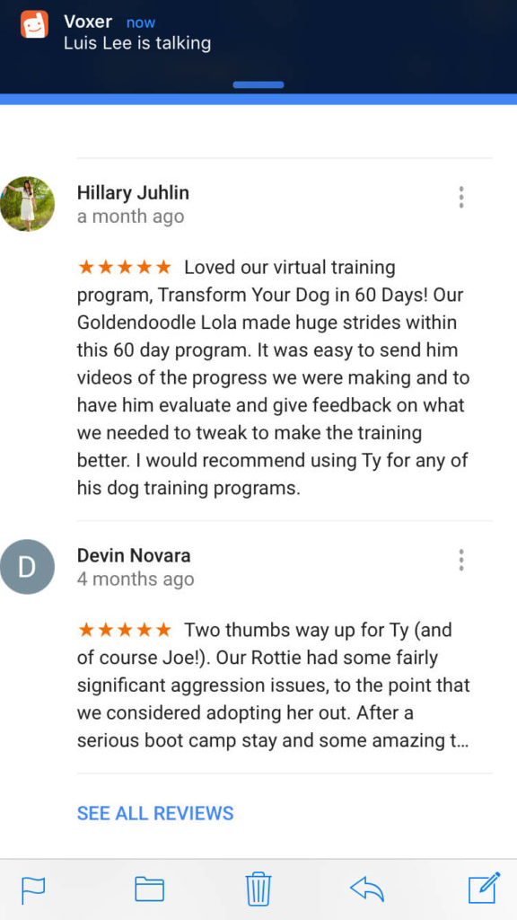 Transform Your Dog in 60 days Testimonial 6