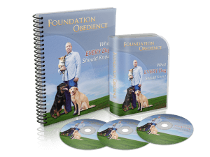 foundation obedience
