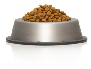 Dog-Food-Kibble-300x227