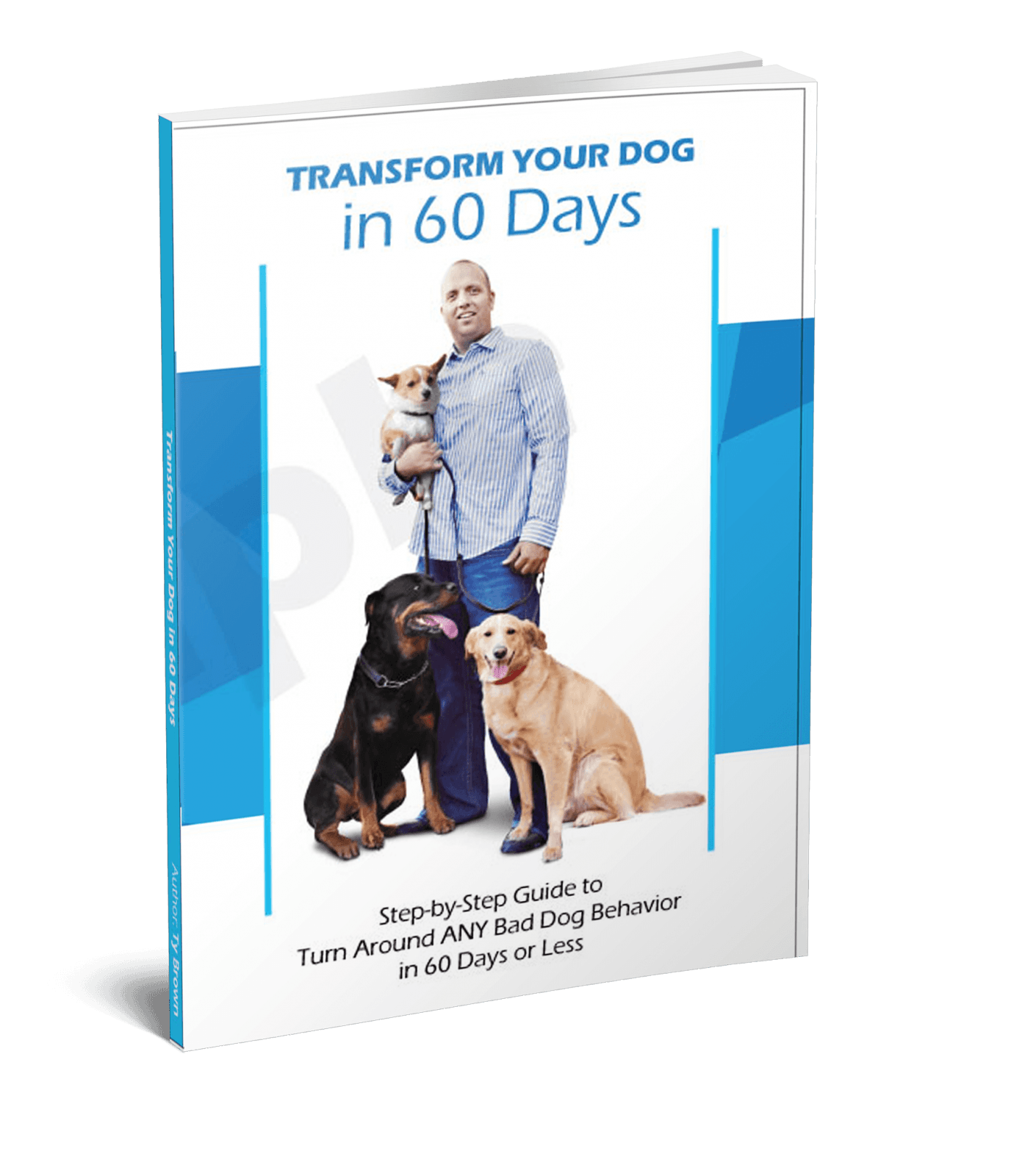 Transform Your Dog in 60 Days