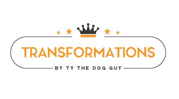 Transform your dog