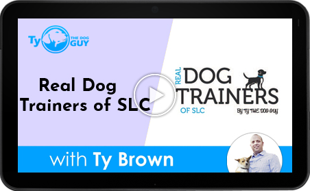 Real Dog Trainers Of SLC UTah
