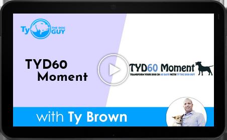 TYD60 Moment